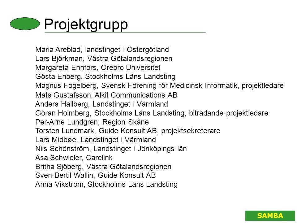 Projektgrupp