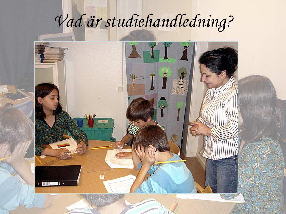 Vad är studiehandledning