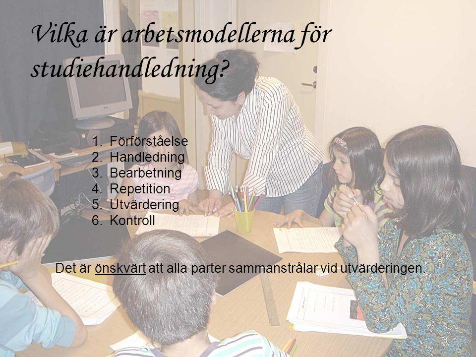 Vilka är arbetsmodellerna för studiehandledning