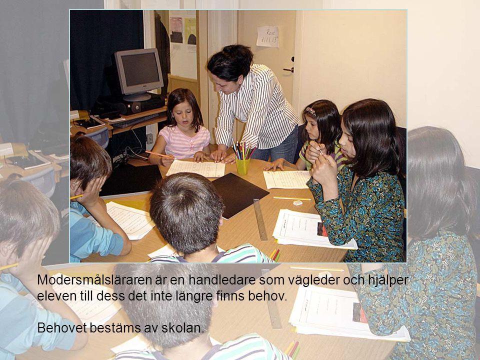 Modersmålsläraren är en handledare som vägleder och hjälper eleven till dess det inte längre finns behov.