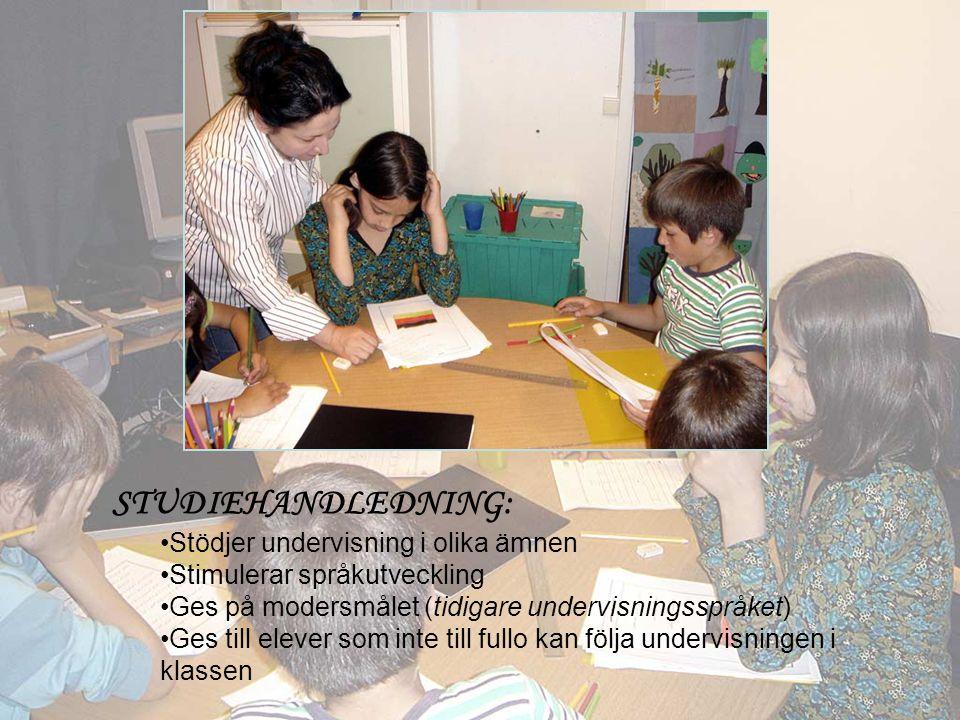 STUDIEHANDLEDNING: Stödjer undervisning i olika ämnen