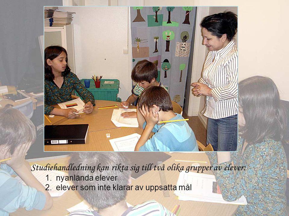 Studiehandledning kan rikta sig till två olika grupper av elever:
