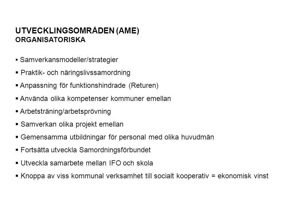 UTVECKLINGSOMRÅDEN (AME)