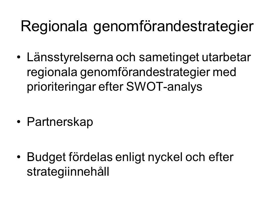 Regionala genomförandestrategier