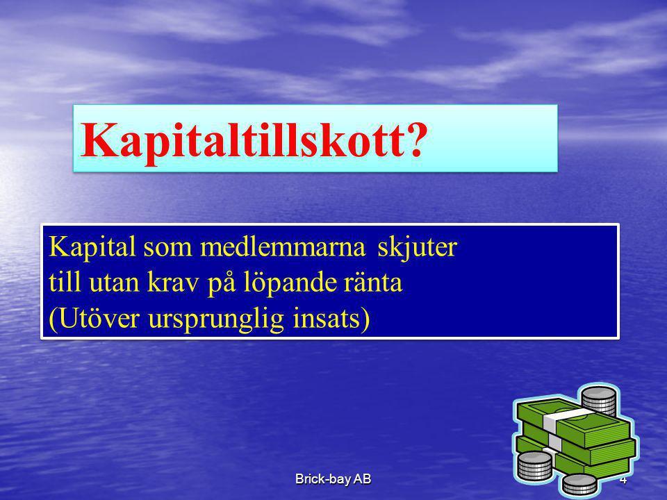 Kapitaltillskott Kapital som medlemmarna skjuter
