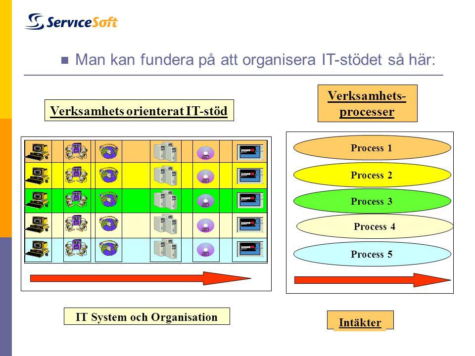 Man kan fundera på att organisera IT-stödet så här: