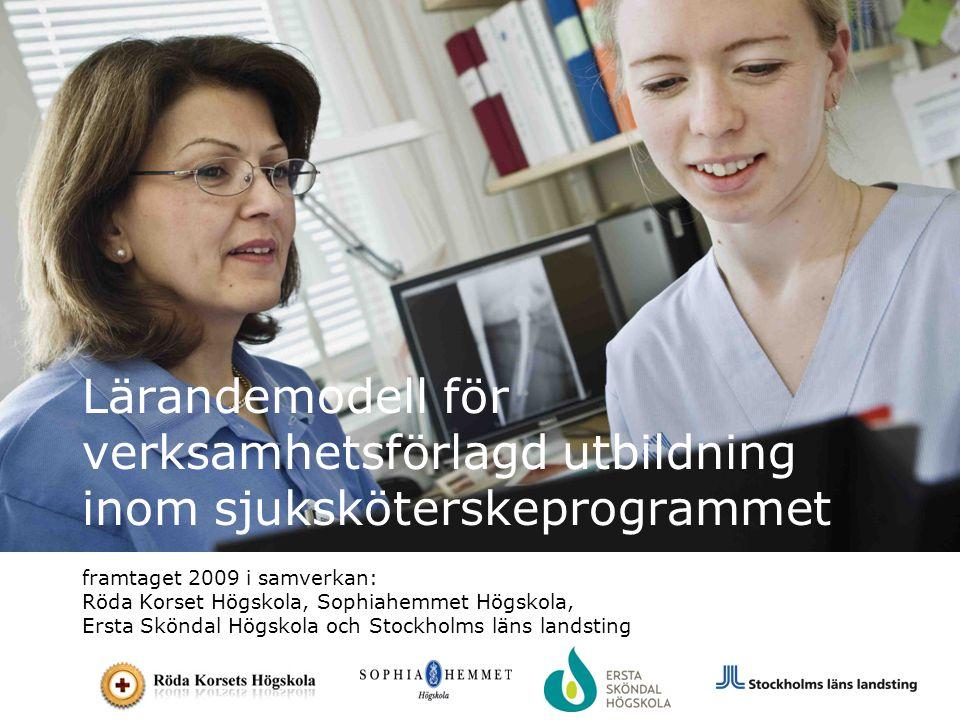Lärandemodell för verksamhetsförlagd utbildning inom sjuksköterskeprogrammet