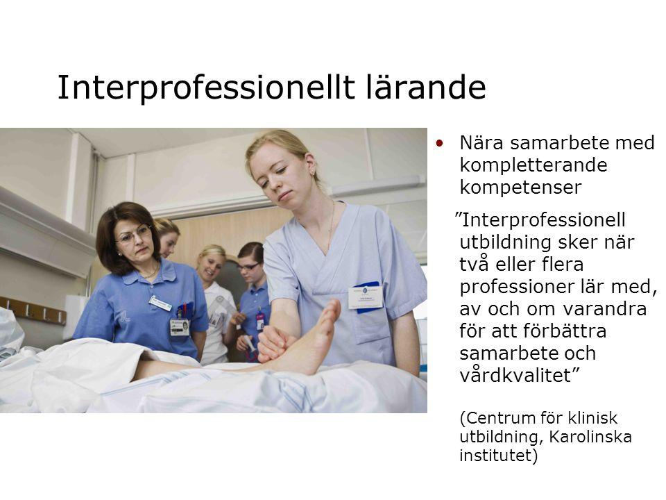 Interprofessionellt lärande