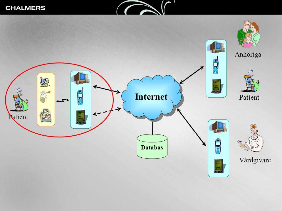 Anhöriga Patient Internet Patient Vårdgivare Databas