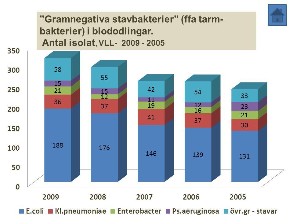 Gramnegativa stavbakterier (ffa tarm-bakterier) i blododlingar.