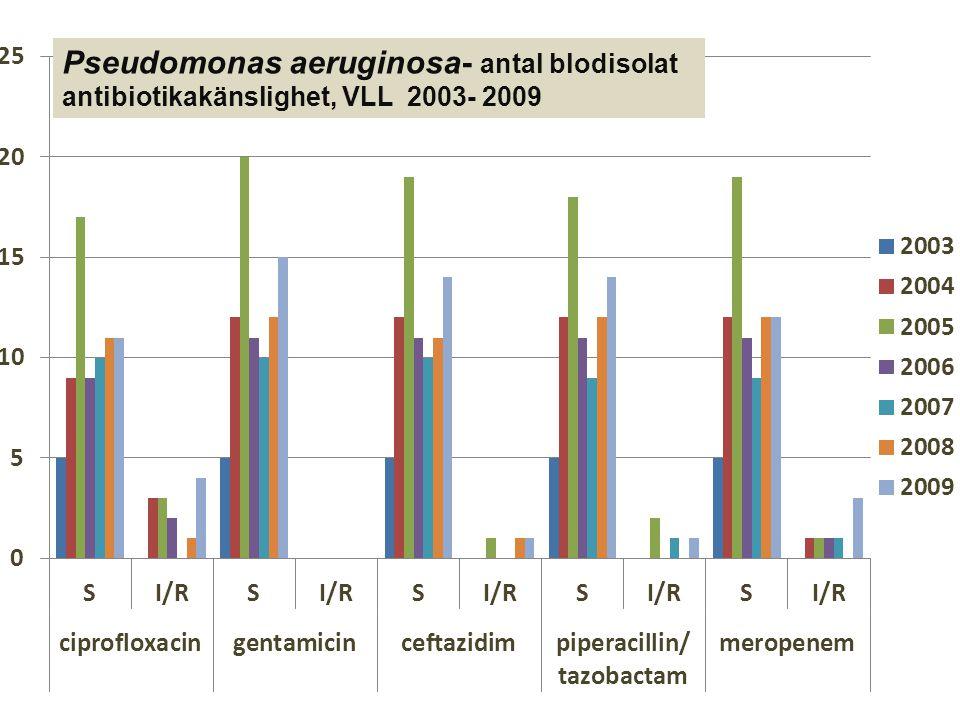 Pseudomonas aeruginosa- antal blodisolat