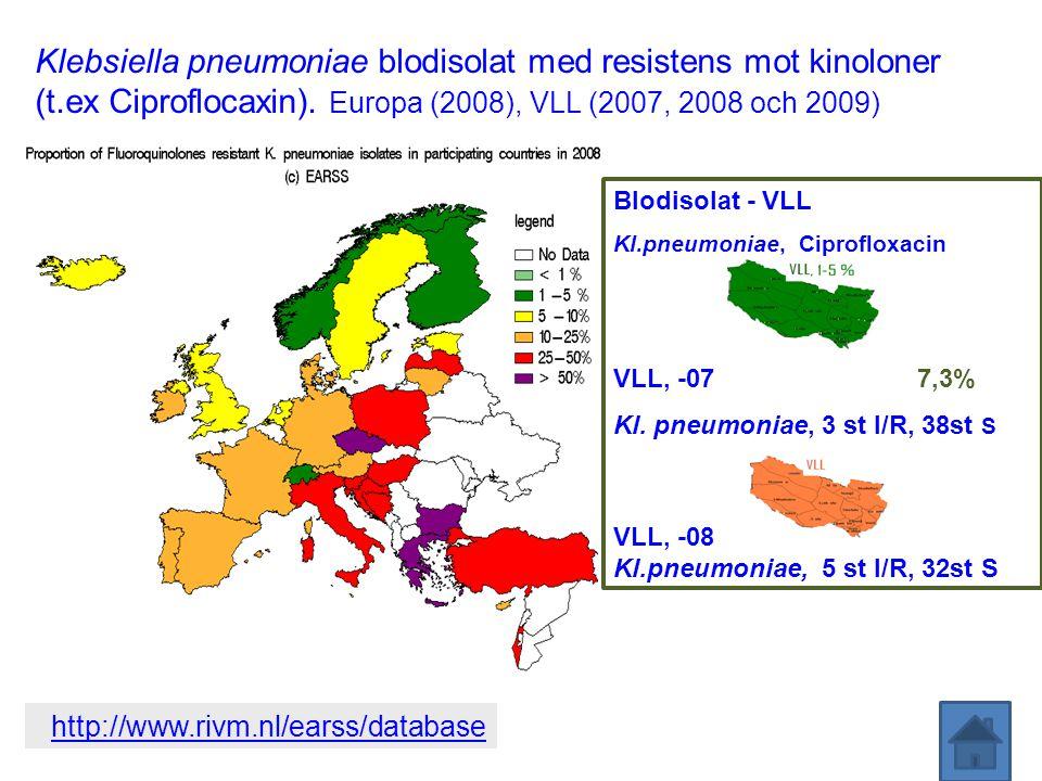 Klebsiella pneumoniae blodisolat med resistens mot kinoloner (t