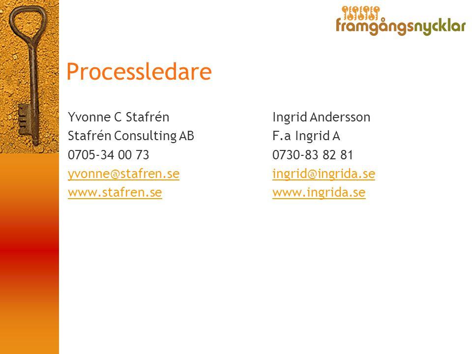 Processledare Yvonne C Stafrén Stafrén Consulting AB 0705-34 00 73