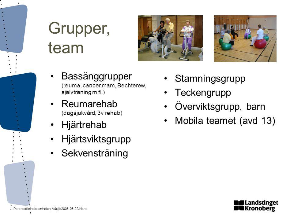 Grupper, team Bassänggrupper (reuma, cancer mam, Bechterew, självträning m fl.) Reumarehab (dagsjukvård, 3v rehab)