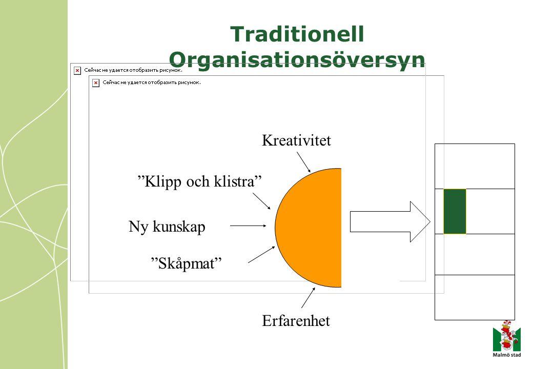Traditionell Organisationsöversyn