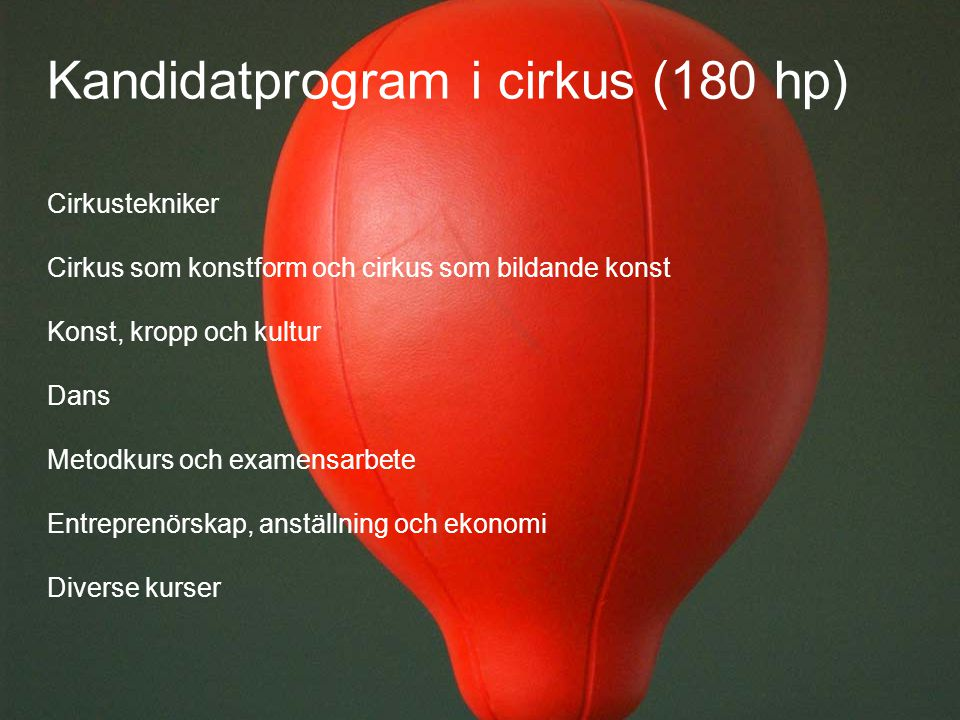 Kandidatprogram i cirkus (180 hp)