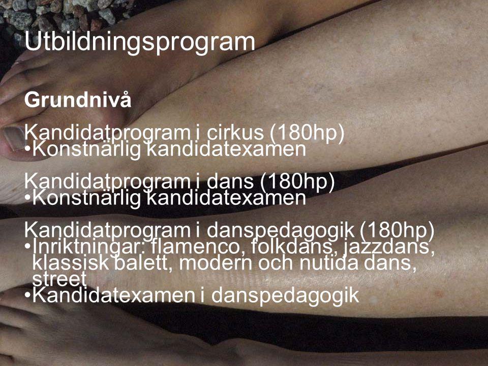 Utbildningsprogram Grundnivå Kandidatprogram i cirkus (180hp)