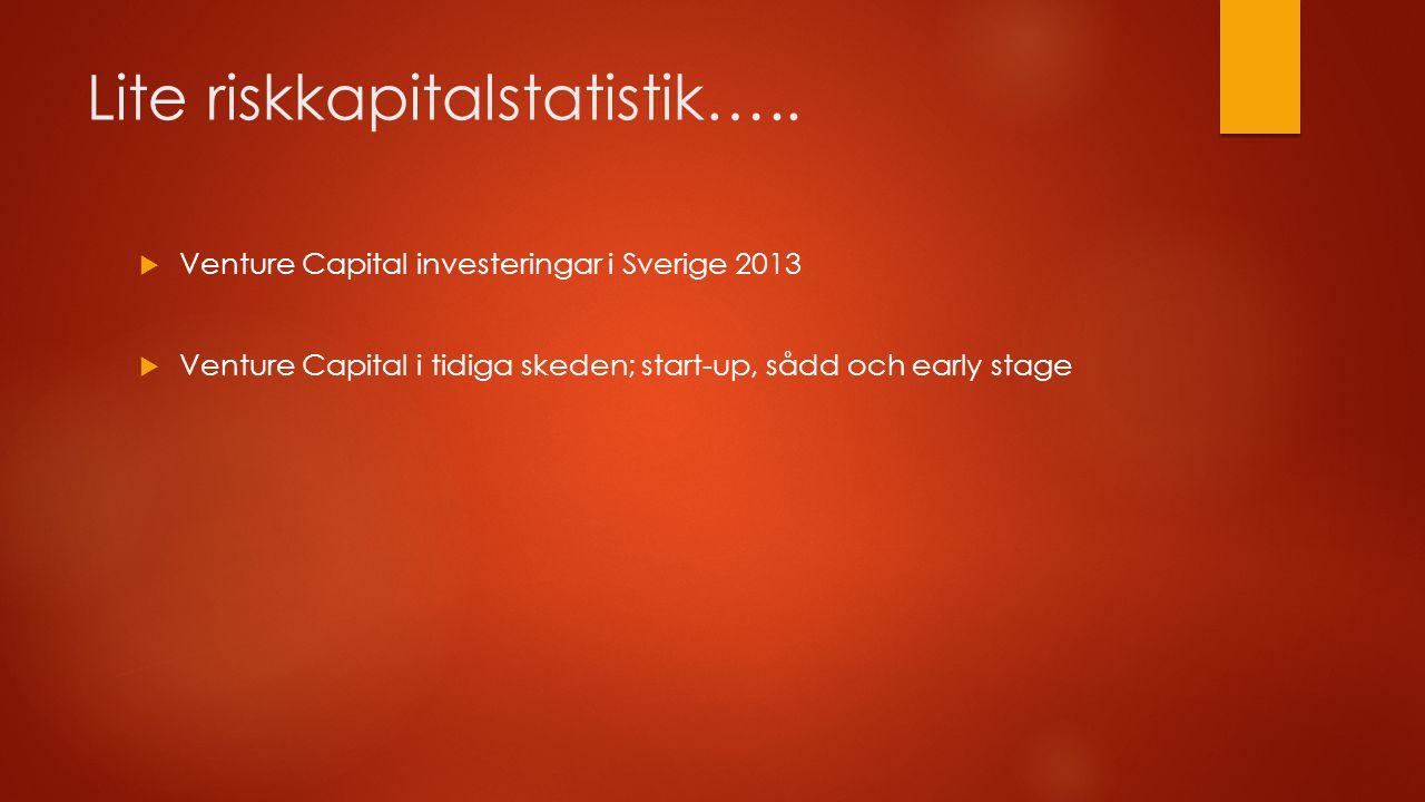 Lite riskkapitalstatistik…..