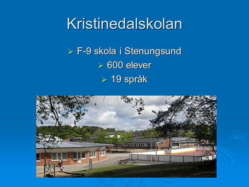 Kristinedalskolan F-9 skola i Stenungsund 600 elever 19 språk