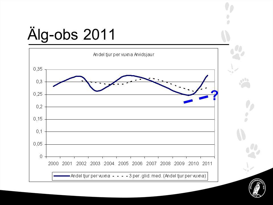 Älg-obs 2011 Tabell visar andelen tjur av den vuxna höststammen, slutsats det är inte tjur brist m a a rekommendationen.