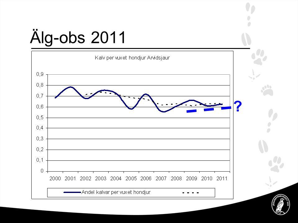 Älg-obs 2011 .