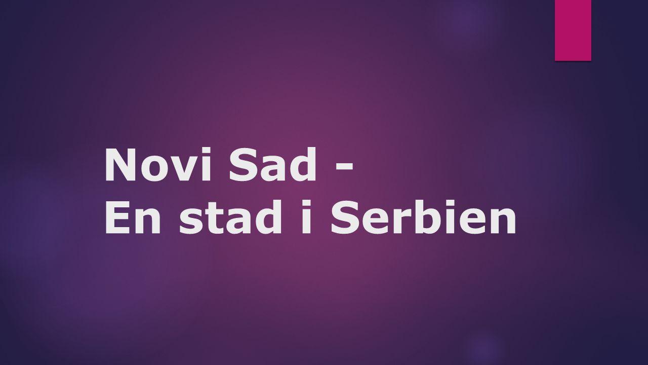 Novi Sad - En stad i Serbien