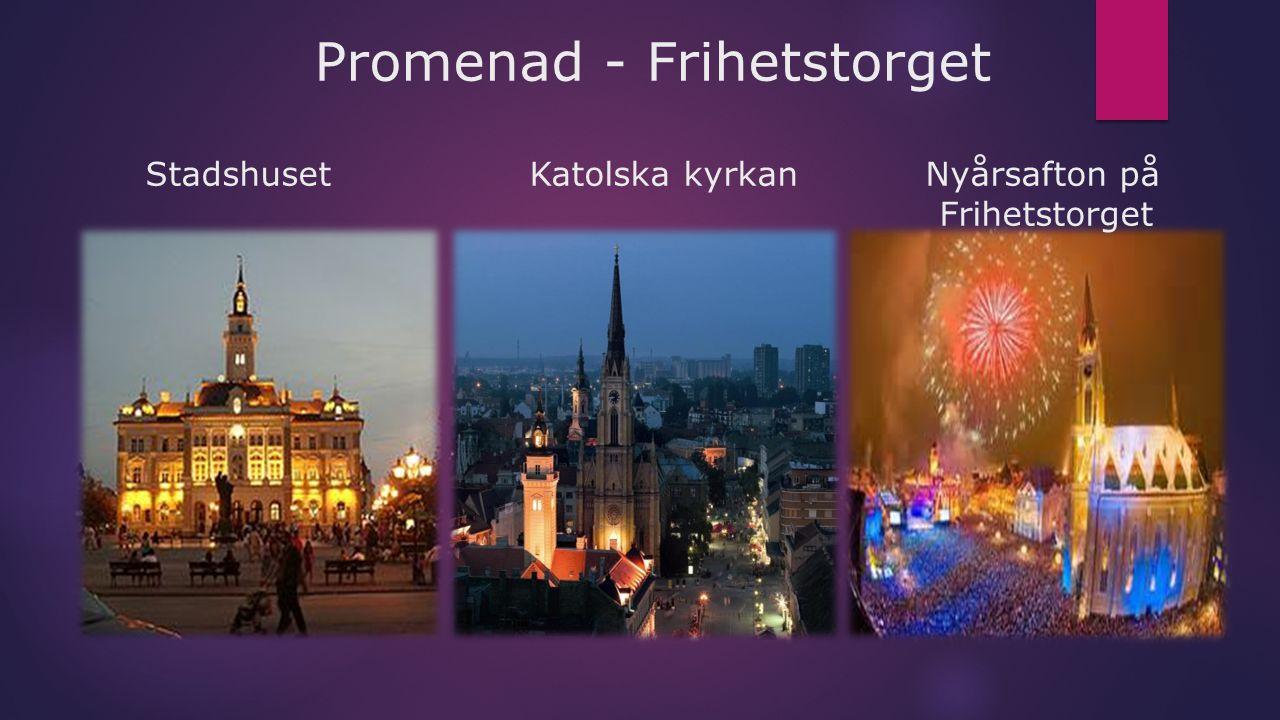 Promenad - Frihetstorget Stadshuset Katolska kyrkan Nyårsafton på Frihetstorget