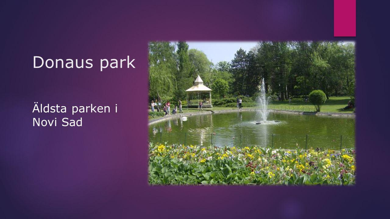 Donaus park Äldsta parken i Novi Sad