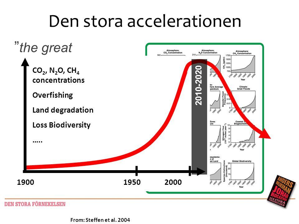 Den stora accelerationen