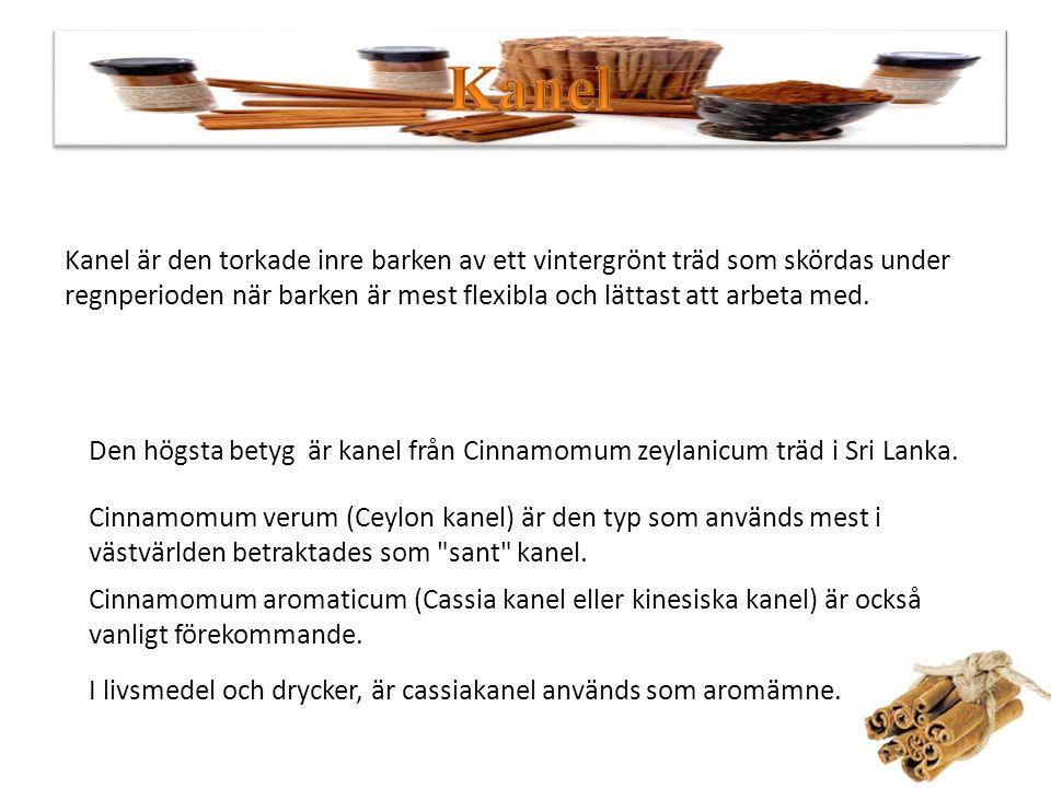 Kanel Det finns över 200 typer av kanel Vad är Kanel