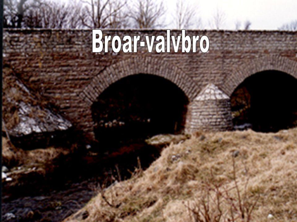 Broar-valvbro