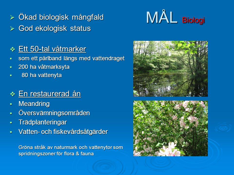 MÅL Biologi Ökad biologisk mångfald God ekologisk status