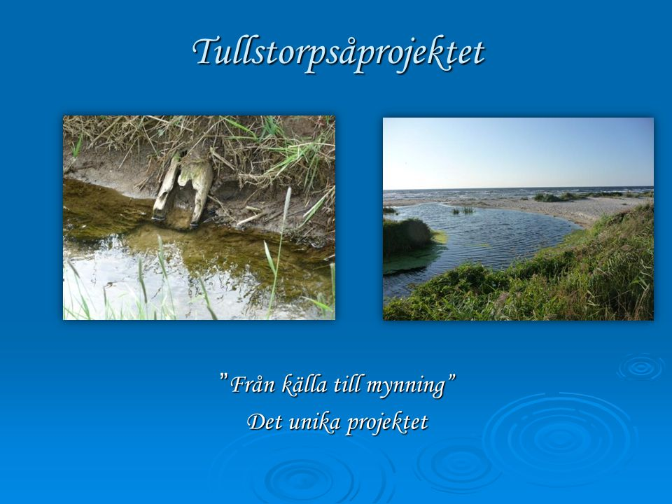 Tullstorpsåprojektet