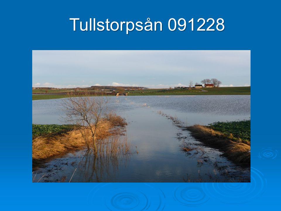 Tullstorpsån 091228
