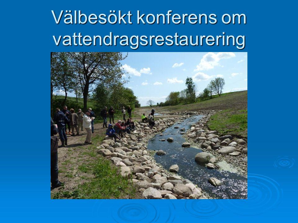 Välbesökt konferens om vattendragsrestaurering