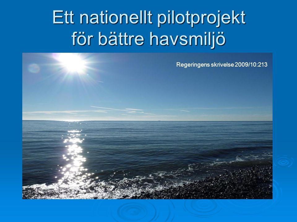 Ett nationellt pilotprojekt för bättre havsmiljö