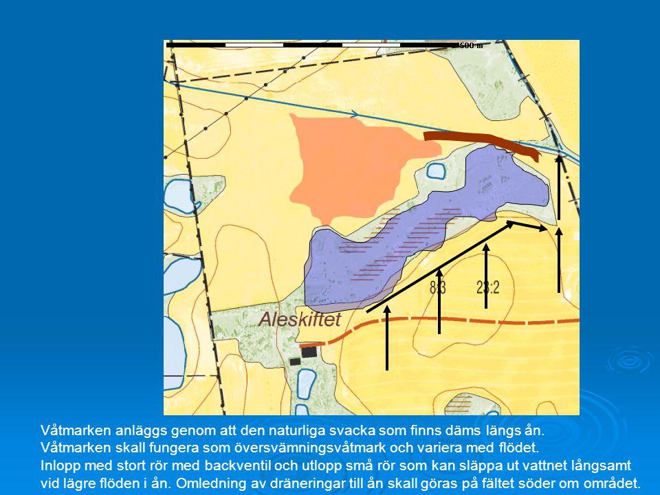 Våtmarken anläggs genom att den naturliga svacka som finns däms längs ån.