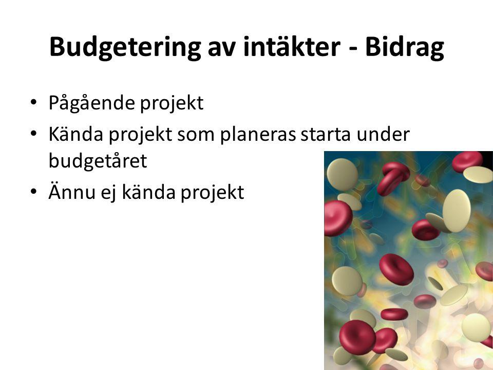 Budgetering av intäkter - Bidrag