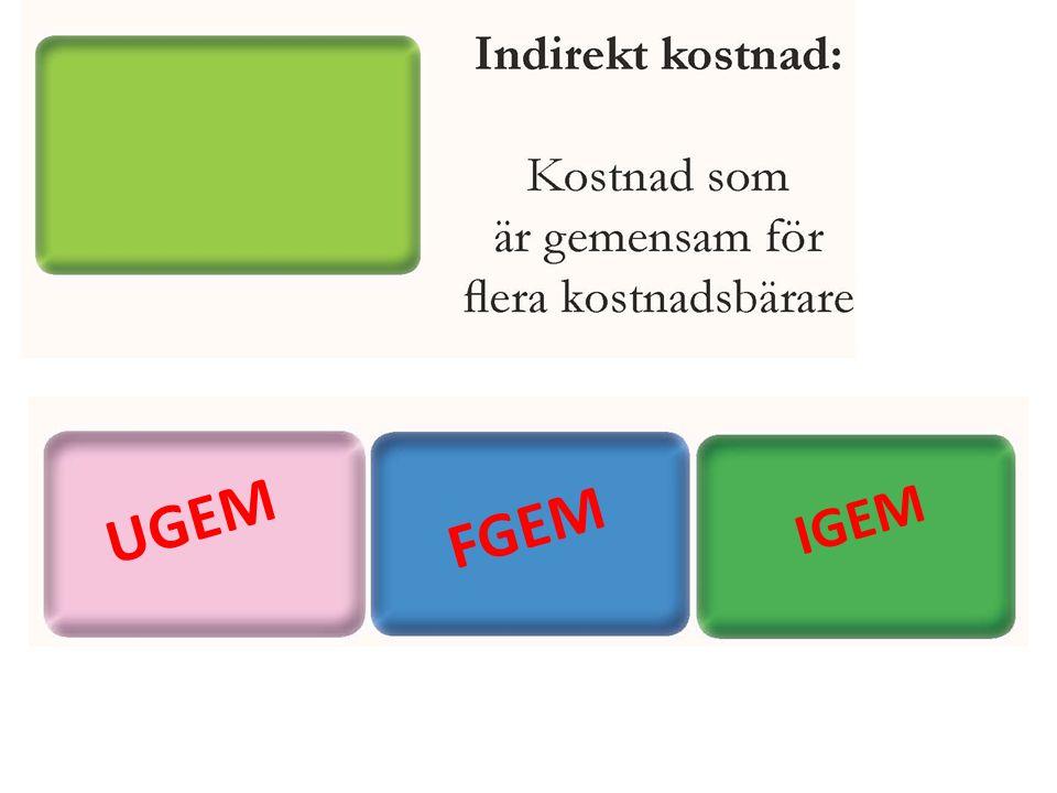 UGEM FGEM IGEM
