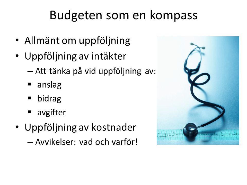 Budgeten som en kompass