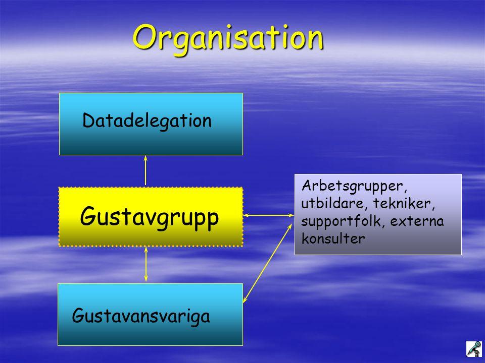 Organisation Gustavgrupp Datadelegation Gustavansvariga