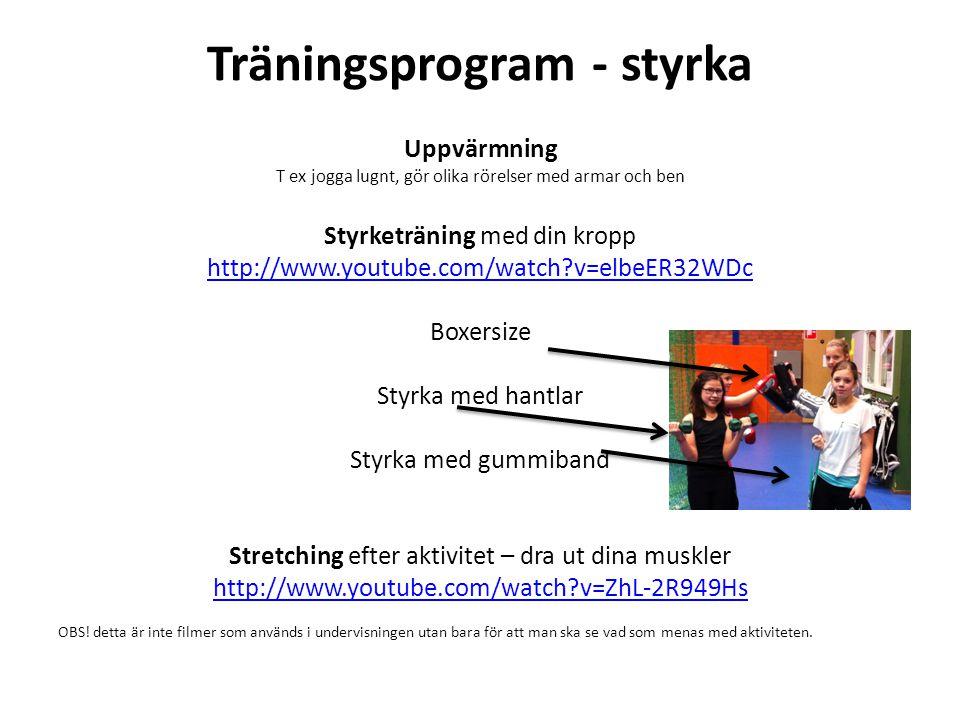 Träningsprogram - styrka