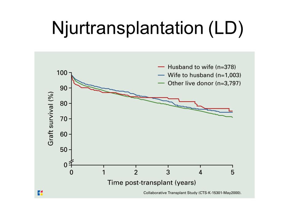 Njurtransplantation (LD)