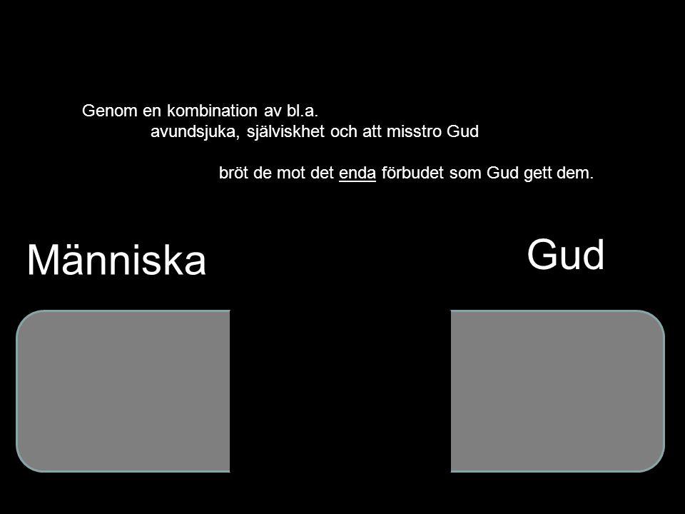 Gud Människa Genom en kombination av bl.a.