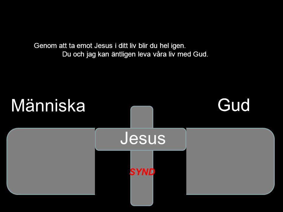 Människa Gud Gud Jesus SYND