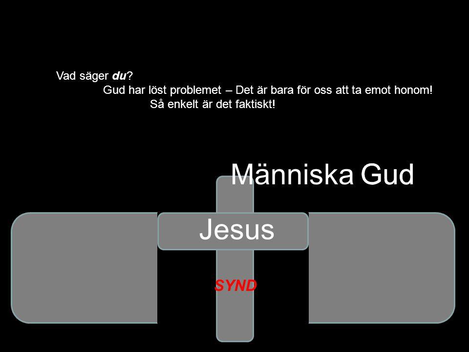 Människa Gud Gud Jesus SYND Vad säger du