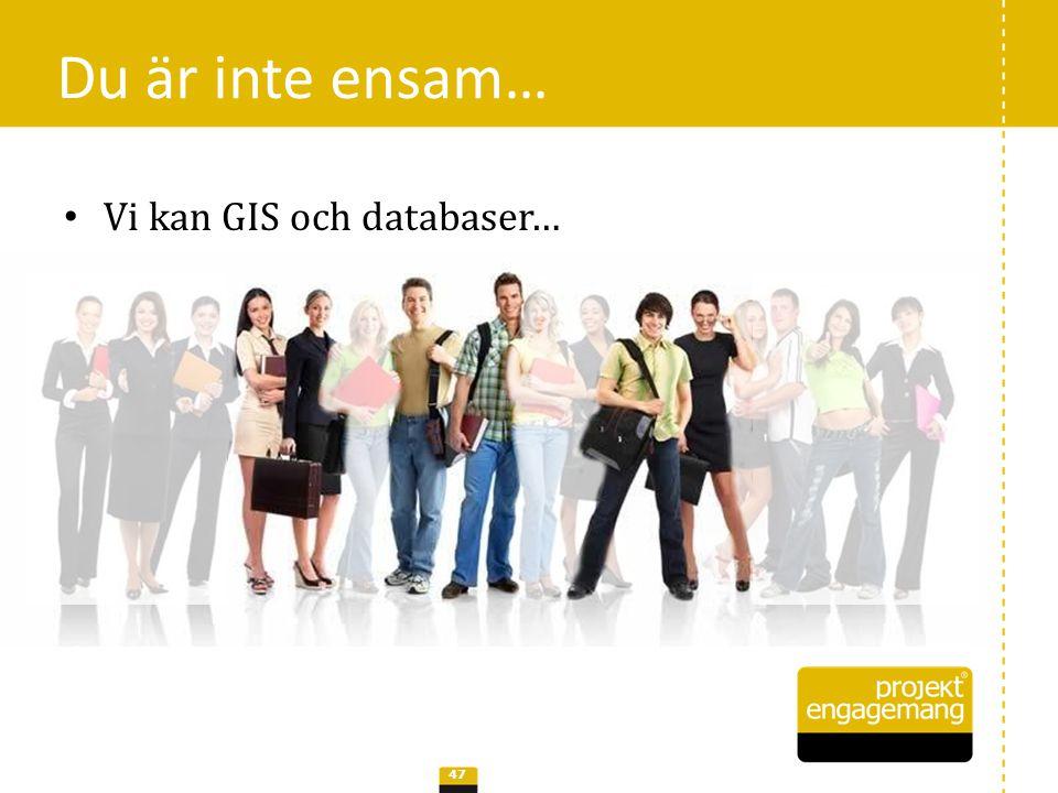 Du är inte ensam… Vi kan GIS och databaser…