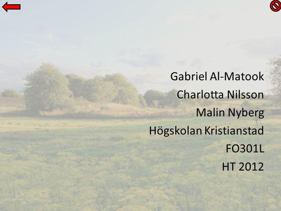 Gabriel Al-Matook Charlotta Nilsson Malin Nyberg Högskolan Kristianstad FO301L HT 2012