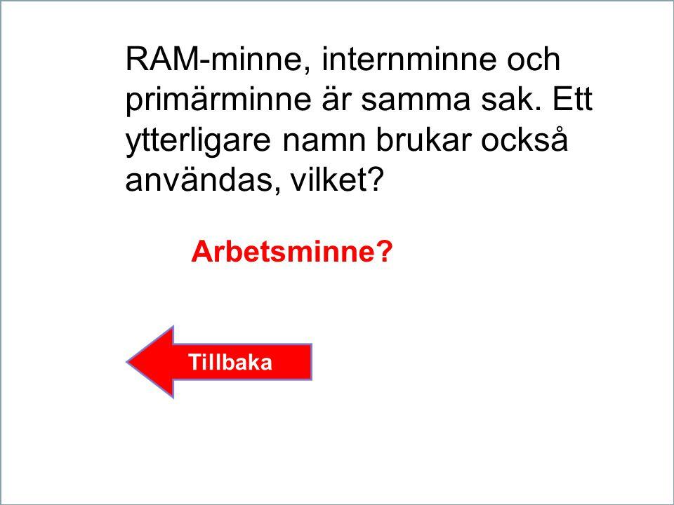 RAM-minne, internminne och primärminne är samma sak