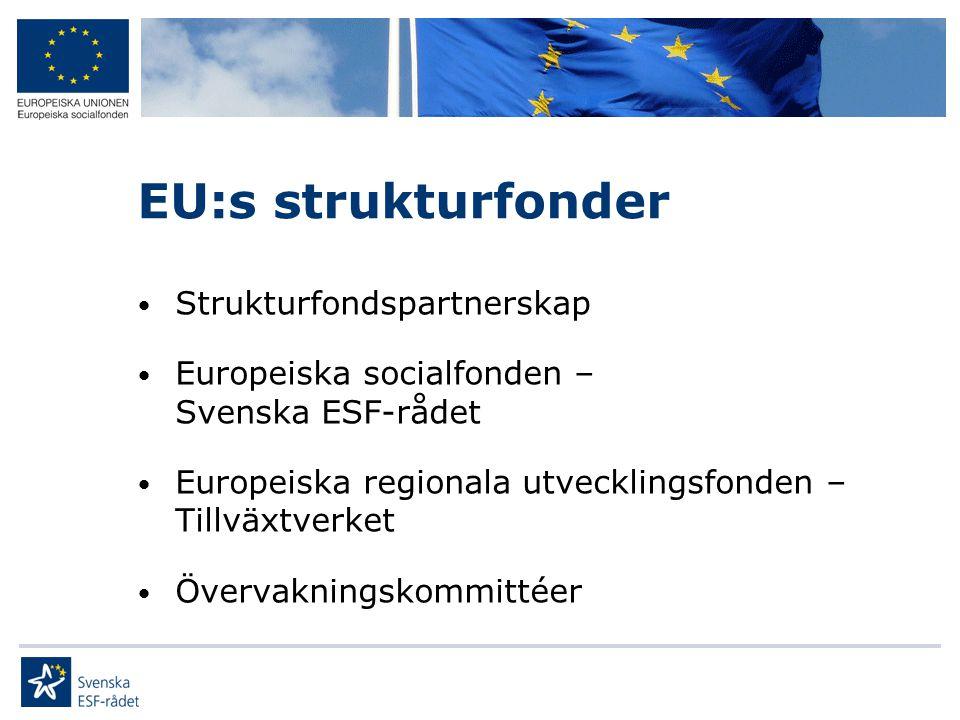 EU:s strukturfonder Strukturfondspartnerskap